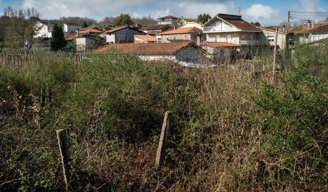 Una finca en el pueblo de Siabal, en Paderne de Allariz, donde la mayoría de los vecinos tiene el entorno de las viviendas cuidado, pero en el que el pasotismo de algún vecino tapa la buena imagen del resto.