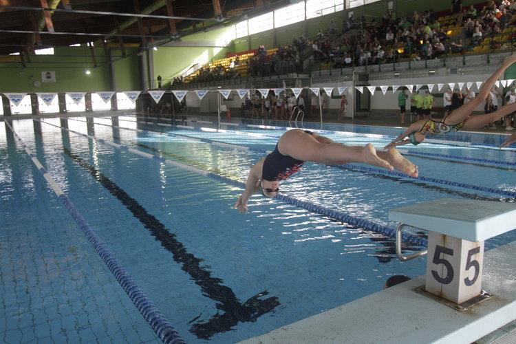La piscina el pr ximo h bitat del ourense d deporte for Piscinas en ourense