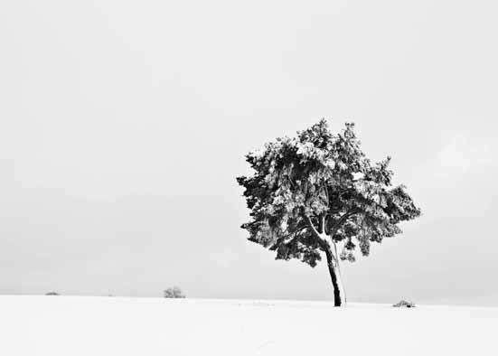 Barreiros y su Galicia en blanco y negro