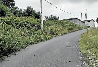 Maleza a tres metros  de las casas en Montealegre